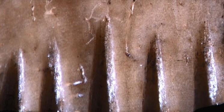 کشف قدیمی ترین ابزار خالکوبی دنیا