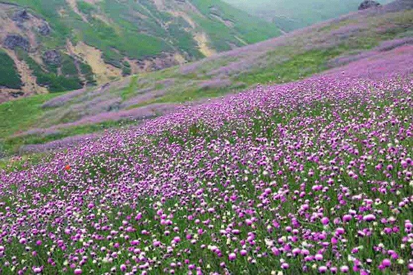افت 10 درجه ای دما در اردبیل و خراسان شمالی