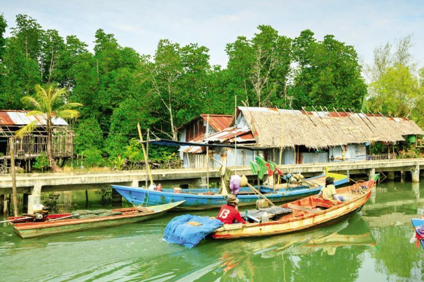بهترین تجربه های اکوتوریسم در تایلند؛ از پارک طبیعت فیل تا خانه درختی رویایی