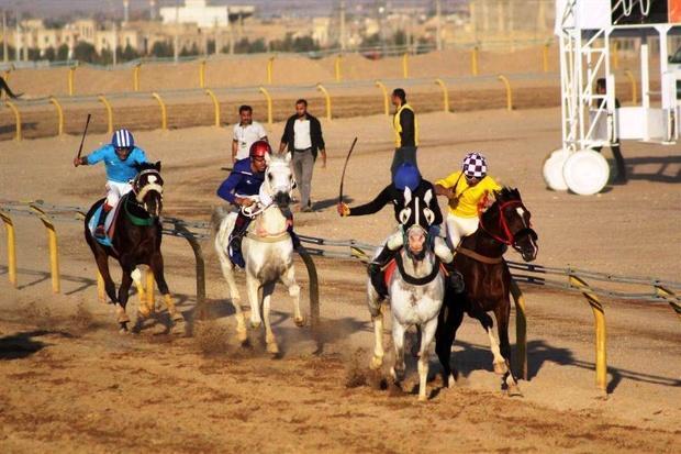 برگزاری مسابقات اسب دوانی پاییزه در ایلام