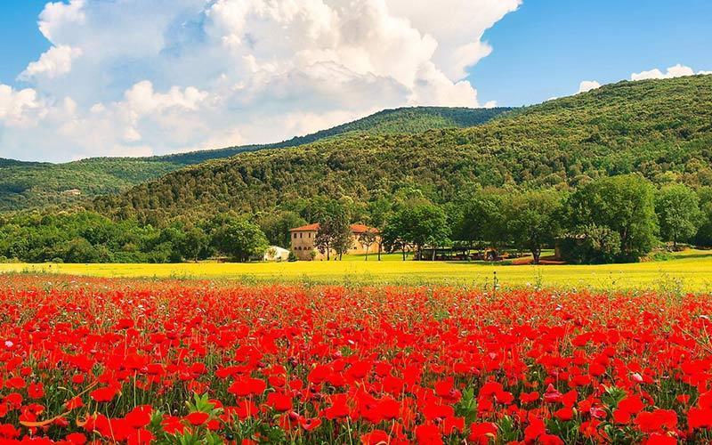 معرفی بهترین مسیرهای طبیعت گردی در ایتالیا
