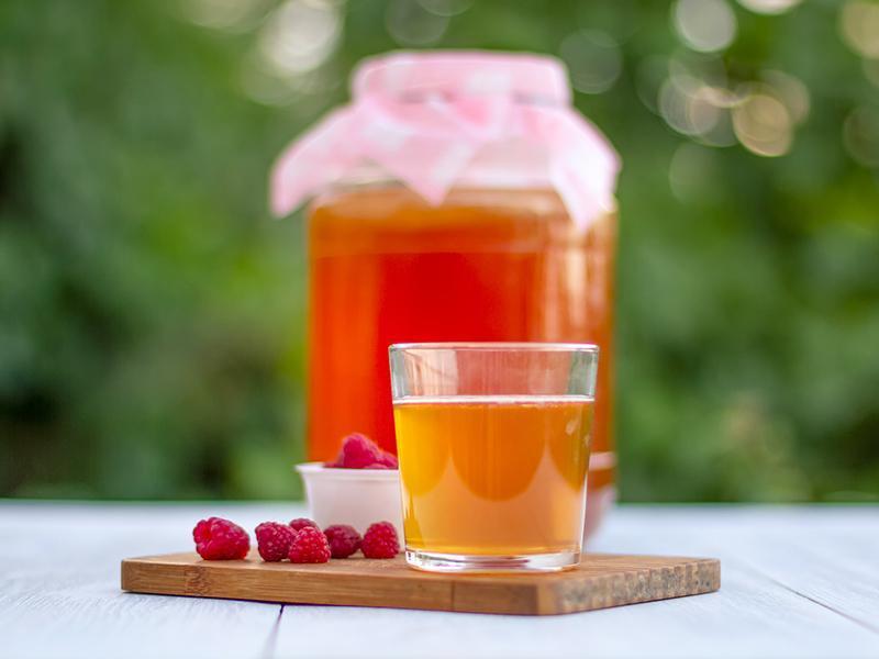 نوشیدن روزانه چای کامبوچا، تضمین سلامتی برای شما